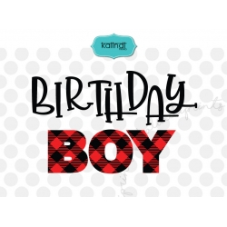 Plaid birthday boy svg, plaid svg