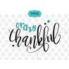 Crazy thankful SVG, thanksgiving SVG